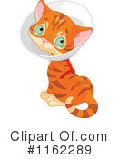 Royalty-Free (RF) Cat Clipart Illustration #1162289
