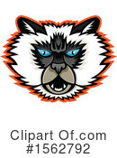 Cat Clipart #1562792 by patrimonio