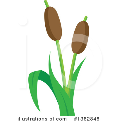 Cattail Clipart #1382848 by visekart