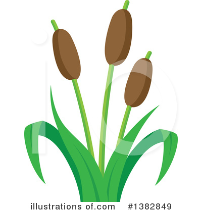 Cattail Clipart #1382849 by visekart