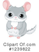Chinchilla Clipart #1239822 by Pushkin