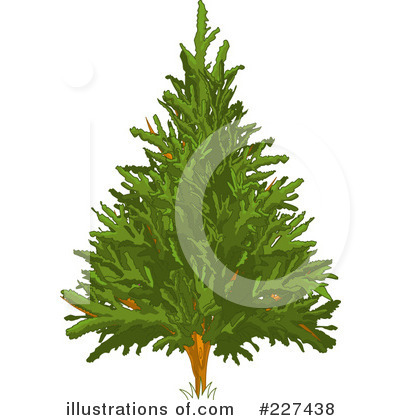 Tree Clipart #227438 by Pushkin