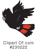 Cockatoo Clipart #230222 by Dennis Holmes Designs