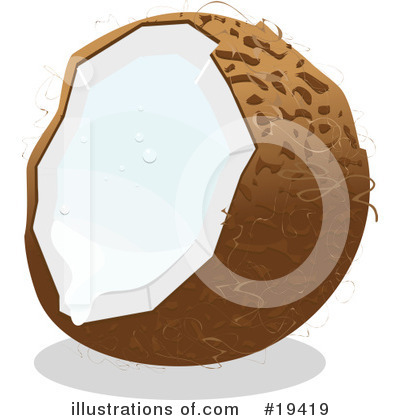 Coconut Clipart #19419 by Vitmary Rodriguez