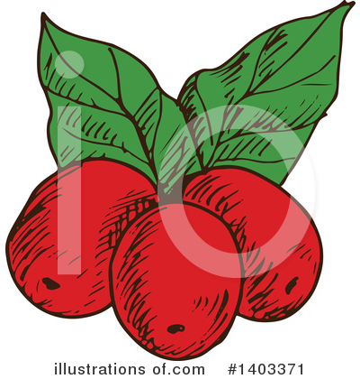 Coffee Berry Clipart #1403371 by Vector Tradition SM