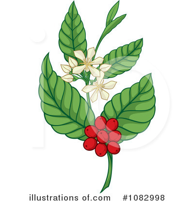 Coffee Berry Clipart #1082998 by Any Vector