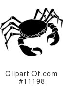 Crab Clipart #11198 by AtStockIllustration