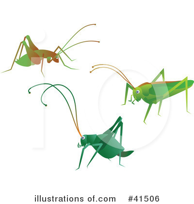Royalty free rf cricket clipart illustration by prawny stock