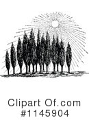 Cypress Clipart #1145904