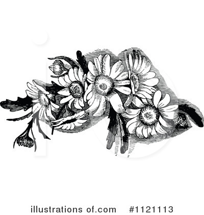 Flowers Clipart #1121113 by Prawny Vintage