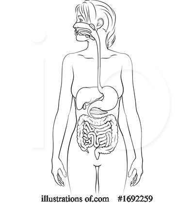 Royalty-Free (RF) Digestion Clipart Illustration by AtStockIllustration - Stock Sample #1692259