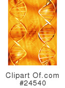 Dna Clipart #24540 by KJ Pargeter