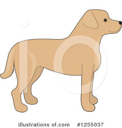 Labrador Clipart #1255037 by Maria Bell