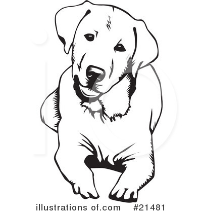 Labrador Clipart #21481 by David Rey