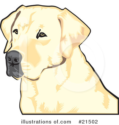 Labrador Clipart #21502 by David Rey