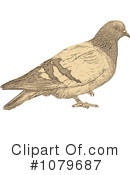 Royalty-Free (RF) Dove Clipart Illustration #1079687