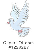 Royalty-Free (RF) Dove Clipart Illustration #1229227