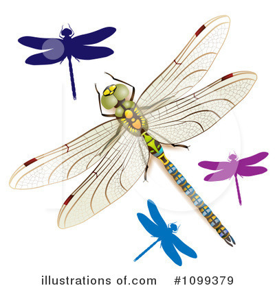 Dragonfly Clipart #1099379 by merlinul