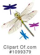 Royalty-Free (RF) Dragonflies Clipart Illustration #1099379
