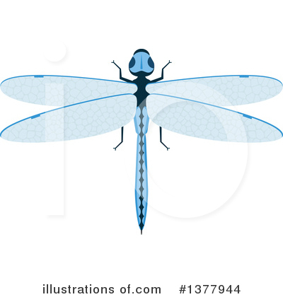 Dragonfly Clipart #1377944 by Vector Tradition SM
