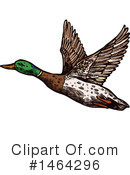 Duck Clipart #1464296 by Vector Tradition SM