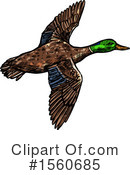 Duck Clipart #1560685 by Vector Tradition SM