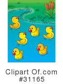 Royalty-Free (RF) Duck Clipart Illustration #31165
