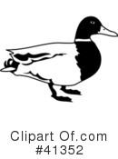 Duck Clipart #41352 by Prawny
