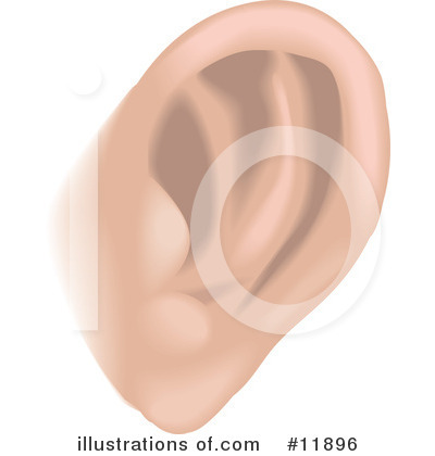 Royalty-Free (RF) Ear Clipart Illustration by AtStockIllustration - Stock Sample #11896