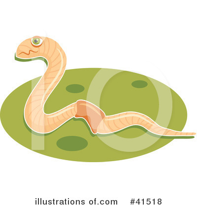 More Clip Art Illustrations of Earthworm