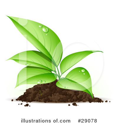 Seedling Clipart #29078 by beboy