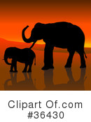 Elephant Clipart #36430 by dero