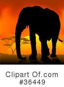 Elephant Clipart #36449 by dero