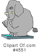 Royalty-Free (RF) Elephant Clipart Illustration #4551