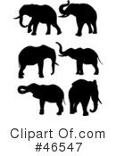 Elephants Clipart #46547 by KJ Pargeter