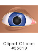 Royalty-Free (RF) eye Clipart Illustration #35819