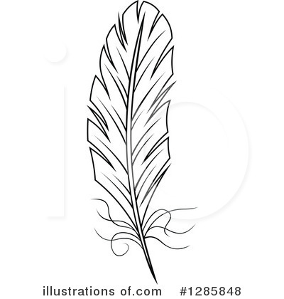 Feather Clipart #1285848 by Vector Tradition SM