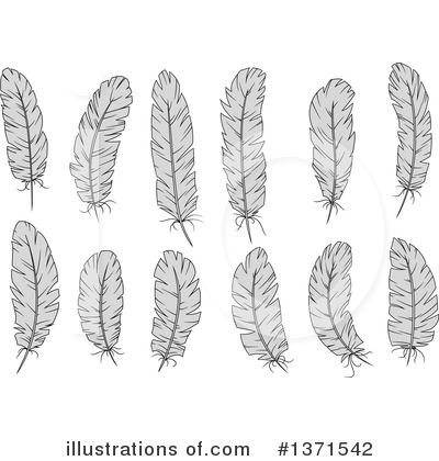 Feather Clipart #1371542 by Vector Tradition SM