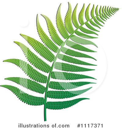 Plant Clipart #1117371 by Lal Perera