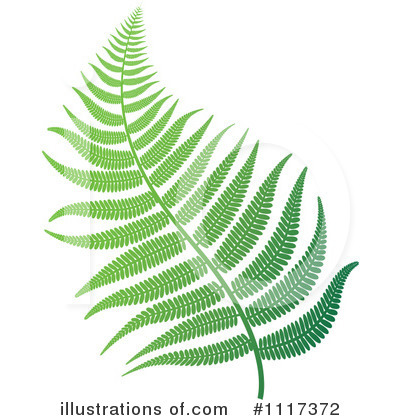 Ferns Clipart #1117372 by Lal Perera