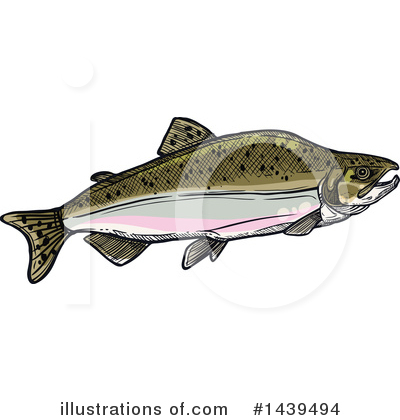 Salmon Clipart #1439494 by Vector Tradition SM