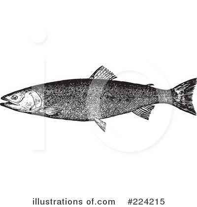 Fish Clipart #224215 by BestVector