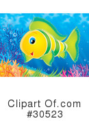Fish Clipart #30523 by Alex Bannykh