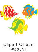 Fish Clipart #38091 by Alex Bannykh