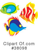 Fish Clipart #38098 by Alex Bannykh
