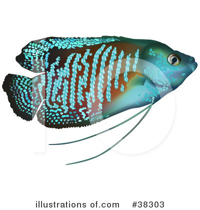 Fish Clipart #38303 by dero