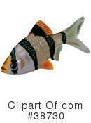 Fish Clipart #38730 by dero