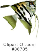 Fish Clipart #38735 by dero