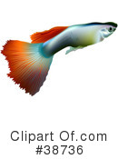Fish Clipart #38736 by dero