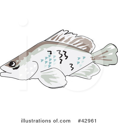 Barramundi Clipart #42961 by Dennis Holmes Designs